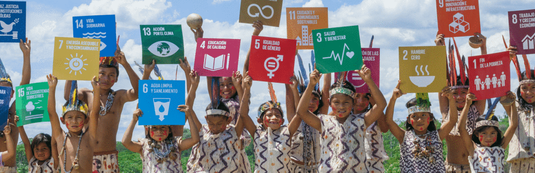 Si es desarrollo será sostenible